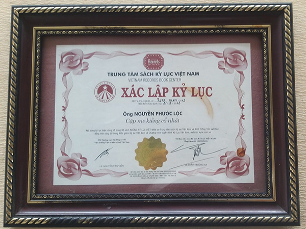 """The Vietnam Record Book Center set the record for """"The oldest pair of ornamental tamarinds"""" in 2013"""